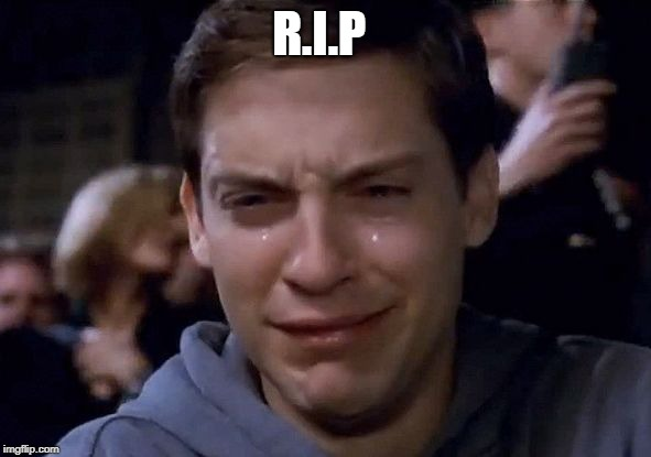 Spiderman Cry | R.I.P | image tagged in spiderman cry | made w/ Imgflip meme maker