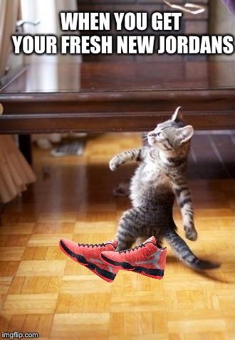Cool Cat Stroll | WHEN YOU GET YOUR FRESH NEW JORDANS | image tagged in memes,cool cat stroll | made w/ Imgflip meme maker
