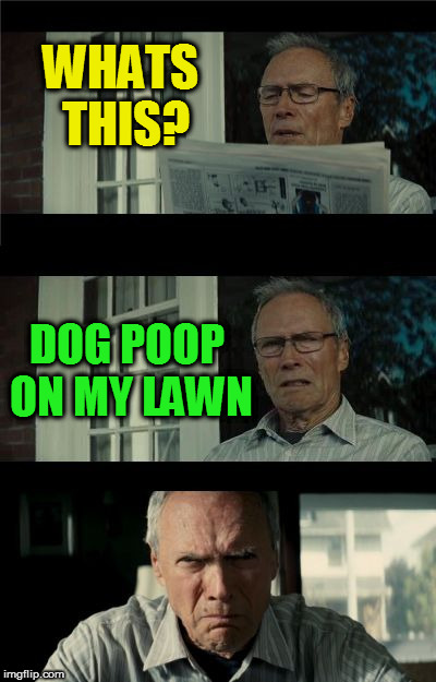 Bad Eastwood Pun | WHATS THIS? DOG POOP ON MY LAWN | image tagged in bad eastwood pun | made w/ Imgflip meme maker
