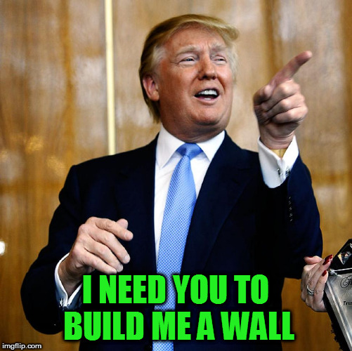 Donal Trump Birthday | I NEED YOU TO BUILD ME A WALL | image tagged in donal trump birthday | made w/ Imgflip meme maker