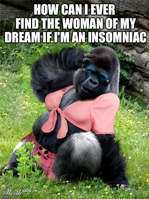 HOW CAN I EVER FIND THE WOMAN OF MY DREAM IF I'M AN INSOMNIAC | image tagged in dreams | made w/ Imgflip meme maker
