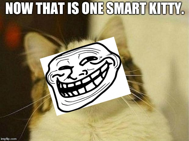 Scared Cat Meme | NOW THAT IS ONE SMART KITTY. | image tagged in memes,scared cat | made w/ Imgflip meme maker