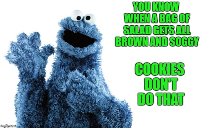 the cookie food group | YOU KNOW WHEN A BAG OF SALAD GETS ALL BROWN AND SOGGY COOKIES DON'T DO THAT | image tagged in cookies,cookie monster | made w/ Imgflip meme maker