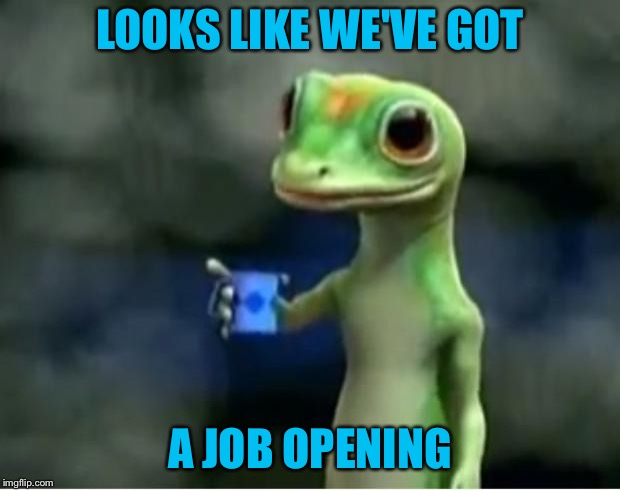 Geico Gecko | LOOKS LIKE WE'VE GOT A JOB OPENING | image tagged in geico gecko | made w/ Imgflip meme maker