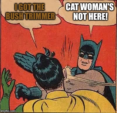 Batman Slapping Robin Meme | I GOT THE BUSH TRIMMER CAT WOMAN'S NOT HERE! | image tagged in memes,batman slapping robin | made w/ Imgflip meme maker