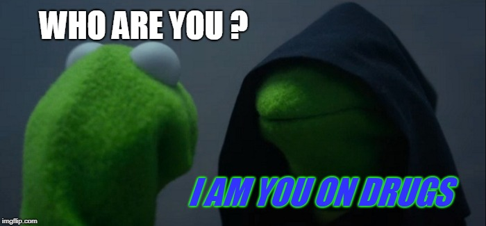 Evil Kermit | WHO ARE YOU ? I AM YOU ON DRUGS | image tagged in memes,evil kermit | made w/ Imgflip meme maker