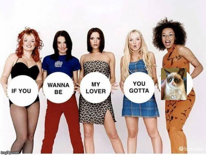 Saggy spice  | image tagged in memes,spice girls,tour,grumpy cat,bad photoshop,funny | made w/ Imgflip meme maker
