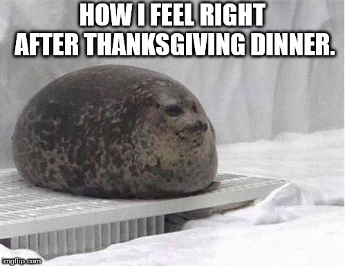 How I feel right after thanksgiving dinner | HOW I FEEL RIGHT AFTER THANKSGIVING DINNER. | image tagged in thanksgiving | made w/ Imgflip meme maker