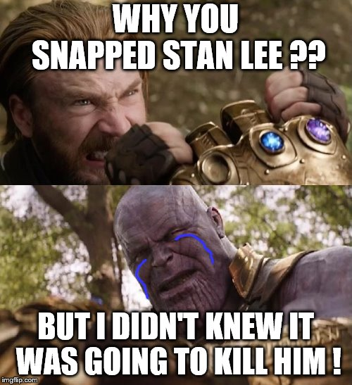 Avengers Infinity War Cap vs Thanos | WHY YOU SNAPPED STAN LEE ?? BUT I DIDN'T KNEW IT WAS GOING TO KILL HIM ! | image tagged in avengers infinity war cap vs thanos | made w/ Imgflip meme maker