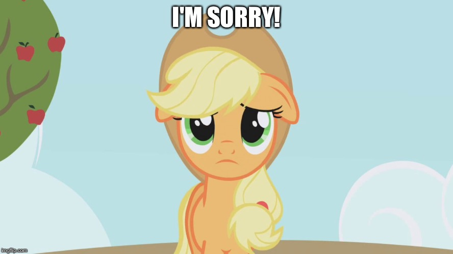 I'm sorry! | I'M SORRY! | image tagged in applejack sad,memes,applejack,my little pony,my little pony friendship is magic,sympathy | made w/ Imgflip meme maker