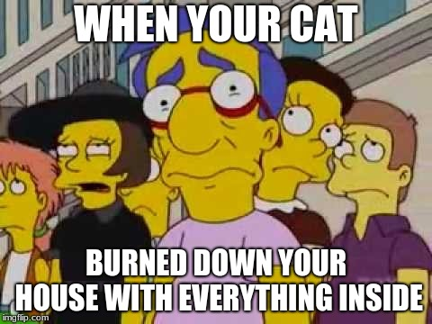 sad milhouse | WHEN YOUR CAT BURNED DOWN YOUR HOUSE WITH EVERYTHING INSIDE | image tagged in sad milhouse | made w/ Imgflip meme maker