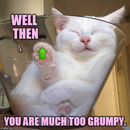 WELL THEN YOU ARE MUCH TOO GRUMPY. | made w/ Imgflip meme maker