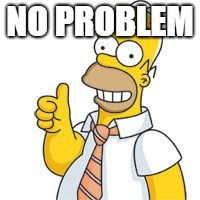 homer no problemo | NO PROBLEM | image tagged in homer no problemo | made w/ Imgflip meme maker