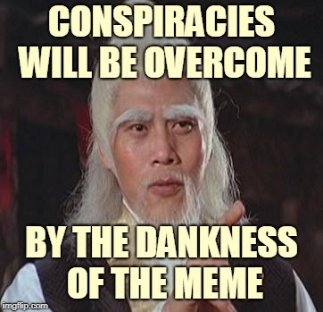 Wise Kung Fu Master | CONSPIRACIES WILL BE OVERCOME BY THE DANKNESS OF THE MEME | image tagged in wise kung fu master | made w/ Imgflip meme maker