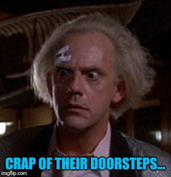 Doc Brown | CRAP OF THEIR DOORSTEPS... | image tagged in doc brown | made w/ Imgflip meme maker