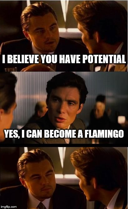 Inception | I BELIEVE YOU HAVE POTENTIAL YES, I CAN BECOME A FLAMINGO | image tagged in memes,inception | made w/ Imgflip meme maker