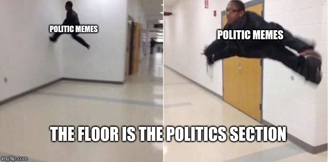 floor is lava | THE FLOOR IS THE POLITICS SECTION POLITIC MEMES POLITIC MEMES | image tagged in floor is lava,memes,the floor is | made w/ Imgflip meme maker