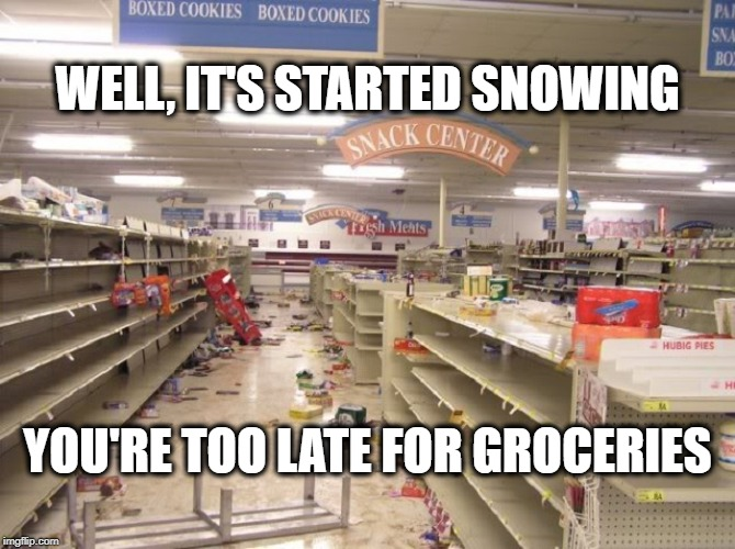 Winter Shopping | WELL, IT'S STARTED SNOWING YOU'RE TOO LATE FOR GROCERIES | image tagged in snow,groceries,panic aisle | made w/ Imgflip meme maker