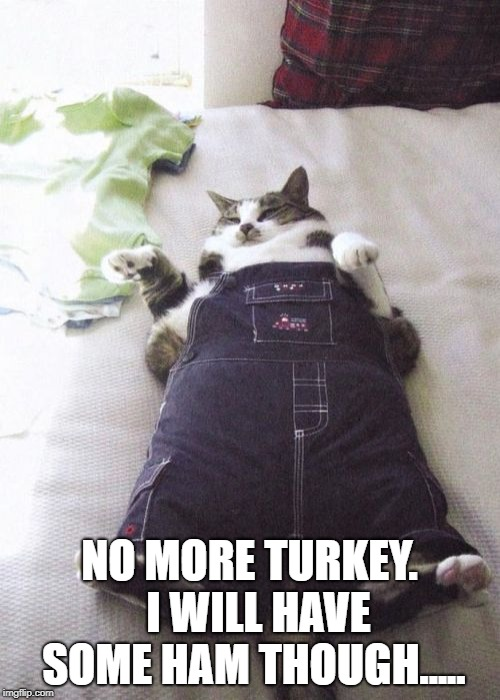 Fat Cat Meme | NO MORE TURKEY.  I WILL HAVE SOME HAM THOUGH..... | image tagged in memes,fat cat | made w/ Imgflip meme maker