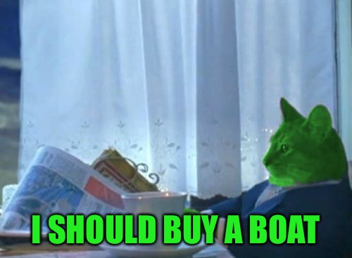 I Should Buy a Boat RayCat | I SHOULD BUY A BOAT | image tagged in i should buy a boat raycat | made w/ Imgflip meme maker