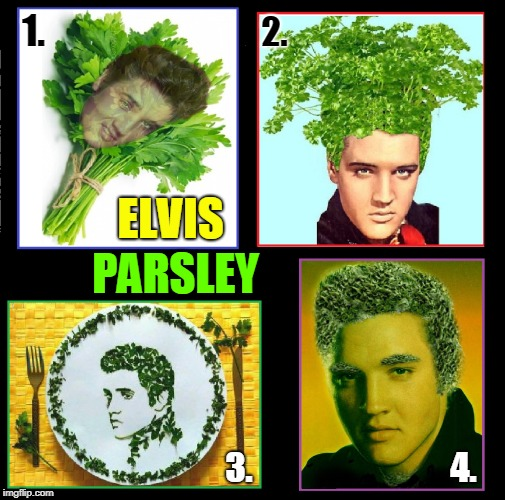 Who Wore it Better? | ELVIS PARSLEY 1. 2. 3. 4. | image tagged in vince vance,elvis presley,elvis parsley,multiple choice,who wore it better,the king | made w/ Imgflip meme maker
