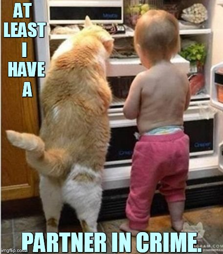 A Late Night Snack | AT LEAST I  HAVE   A PARTNER IN CRIME. | image tagged in memes,cat,toddler,raid,refrigerator,partners in crime | made w/ Imgflip meme maker