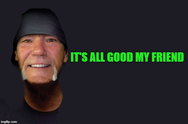 IT'S ALL GOOD MY FRIEND | image tagged in kewlew | made w/ Imgflip meme maker