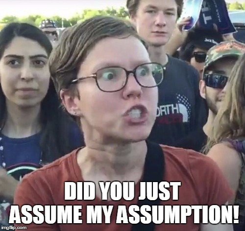 Triggered feminist | DID YOU JUST ASSUME MY ASSUMPTION! | image tagged in triggered feminist | made w/ Imgflip meme maker