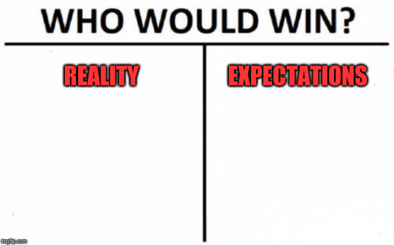 Meme crossover | REALITY EXPECTATIONS | image tagged in memes,who would win | made w/ Imgflip meme maker