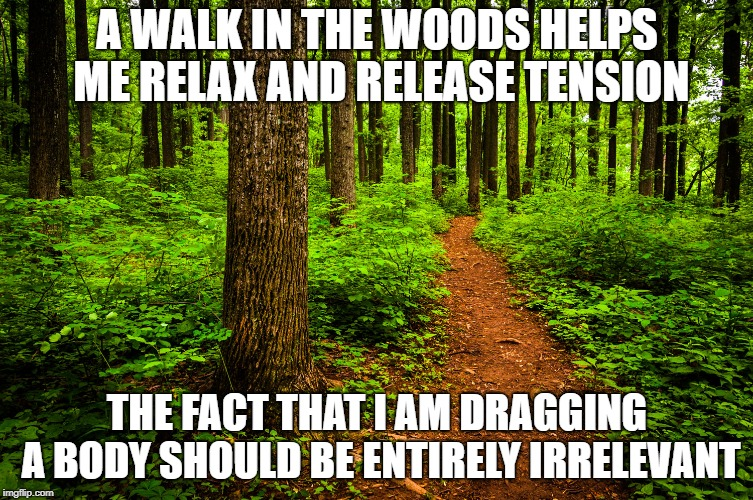 forest path | A WALK IN THE WOODS HELPS ME RELAX AND RELEASE TENSION THE FACT THAT I AM DRAGGING A BODY SHOULD BE ENTIRELY IRRELEVANT | image tagged in forest path | made w/ Imgflip meme maker