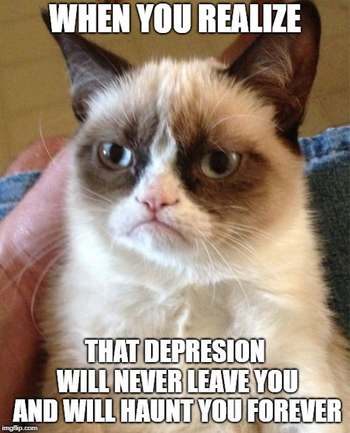 Grumpy Cat | WHEN YOU REALIZE THAT DEPRESION WILL NEVER LEAVE YOU AND WILL HAUNT YOU FOREVER | image tagged in memes,grumpy cat | made w/ Imgflip meme maker