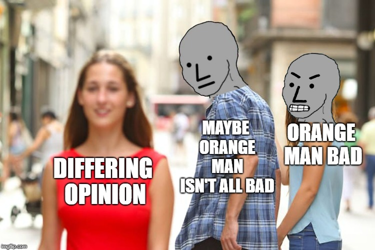 Back To Re-Education Camp For You | DIFFERING OPINION MAYBE ORANGE MAN ISN'T ALL BAD ORANGE MAN BAD | image tagged in memes,distracted boyfriend | made w/ Imgflip meme maker