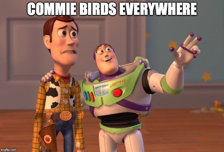 X, X Everywhere Meme | COMMIE BIRDS EVERYWHERE | image tagged in memes,x x everywhere | made w/ Imgflip meme maker