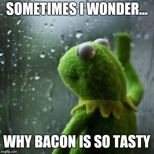 Sometimes i wonder... |  SOMETIMES I WONDER... WHY BACON IS SO TASTY | image tagged in sometimes i wonder,kermit the frog,sad,bacon,iwanttobebacon | made w/ Imgflip meme maker