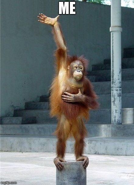 Monkey Raising Hand | ME | image tagged in monkey raising hand | made w/ Imgflip meme maker