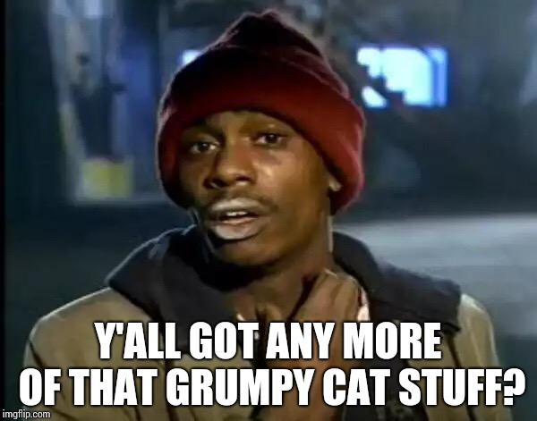 Y'all Got Any More Of That Meme | Y'ALL GOT ANY MORE OF THAT GRUMPY CAT STUFF? | image tagged in memes,y'all got any more of that | made w/ Imgflip meme maker