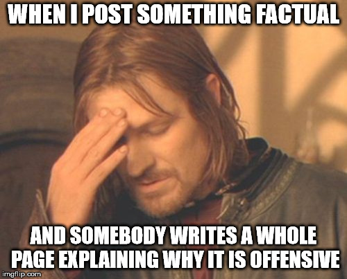I really don't care about your feelings. | WHEN I POST SOMETHING FACTUAL AND SOMEBODY WRITES A WHOLE PAGE EXPLAINING WHY IT IS OFFENSIVE | image tagged in memes,frustrated boromir | made w/ Imgflip meme maker