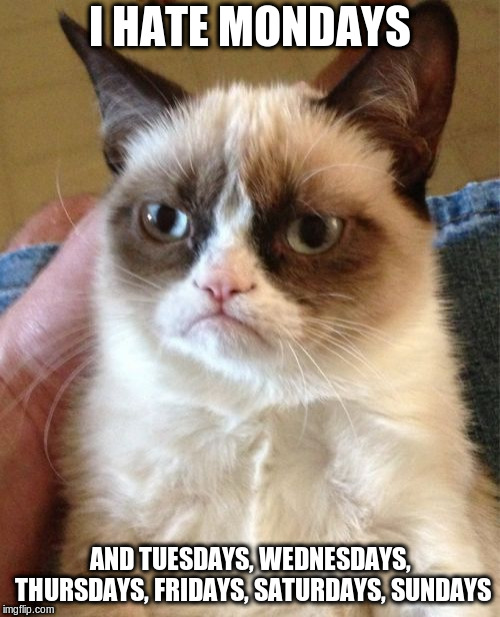 Grumpy Cat | I HATE MONDAYS AND TUESDAYS, WEDNESDAYS, THURSDAYS, FRIDAYS, SATURDAYS, SUNDAYS | image tagged in memes,grumpy cat | made w/ Imgflip meme maker