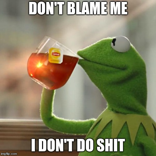 But Thats None Of My Business | DON'T BLAME ME I DON'T DO SHIT | image tagged in memes,but thats none of my business,kermit the frog | made w/ Imgflip meme maker