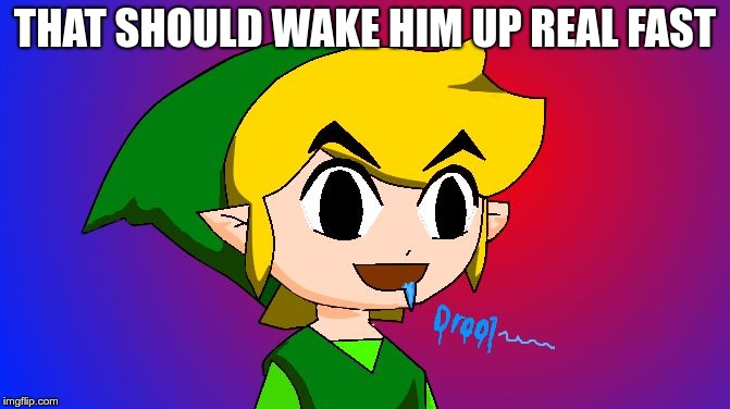 Link drooling | THAT SHOULD WAKE HIM UP REAL FAST | image tagged in link drooling | made w/ Imgflip meme maker
