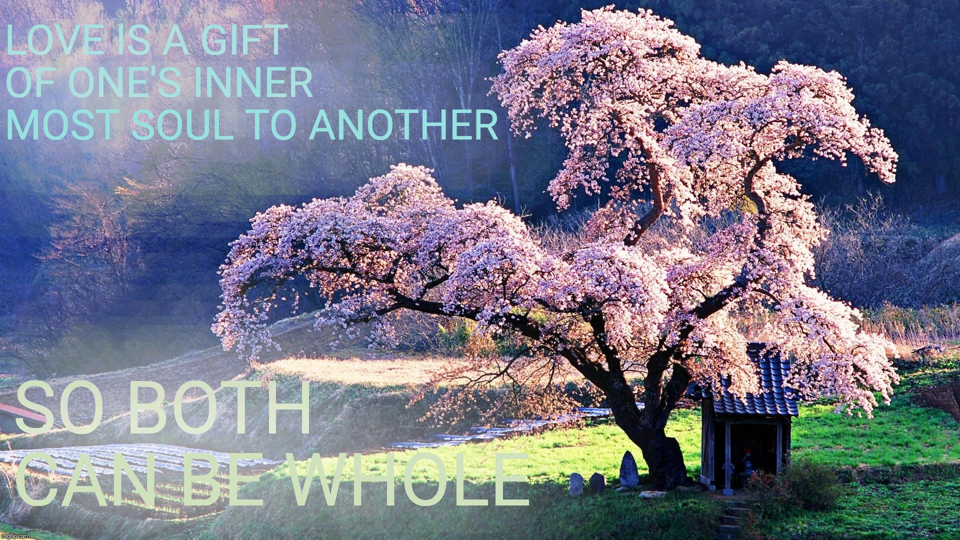LOVE IS A GIFT OF ONE'S INNER MOST SOUL TO ANOTHER SO BOTH CAN BE WHOLE | made w/ Imgflip meme maker