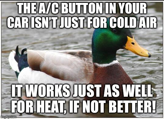 Actual Advice Mallard | THE A/C BUTTON IN YOUR CAR ISN'T JUST FOR COLD AIR IT WORKS JUST AS WELL FOR HEAT, IF NOT BETTER! | image tagged in memes,actual advice mallard,AdviceAnimals | made w/ Imgflip meme maker