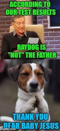 "ACCORDING TO OUR TEST RESULTS RAYDOG IS ""NOT"" THE FATHER THANK YOU DEAR BABY JESUS 