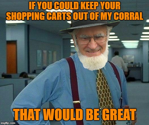 IF YOU COULD KEEP YOUR SHOPPING CARTS OUT OF MY CORRAL THAT WOULD BE GREAT | made w/ Imgflip meme maker