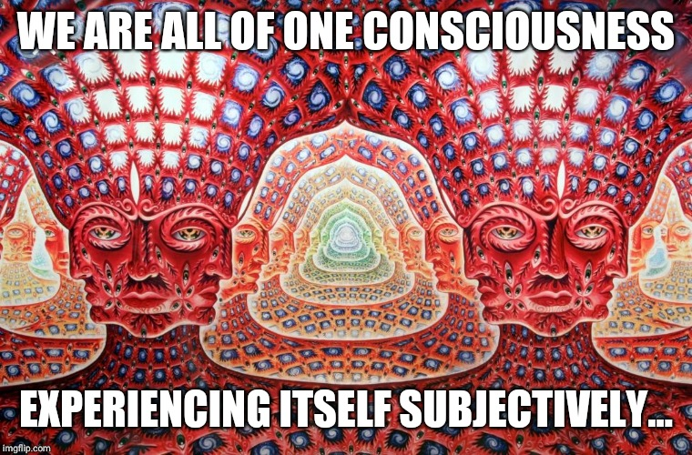 Feeling the vibe | WE ARE ALL OF ONE CONSCIOUSNESS EXPERIENCING ITSELF SUBJECTIVELY... | image tagged in feeling the vibe | made w/ Imgflip meme maker