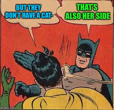 Batman Slapping Robin Meme | BUT THEY DON'T HAVE A CAT- THAT'S ALSO HER SIDE | image tagged in memes,batman slapping robin | made w/ Imgflip meme maker