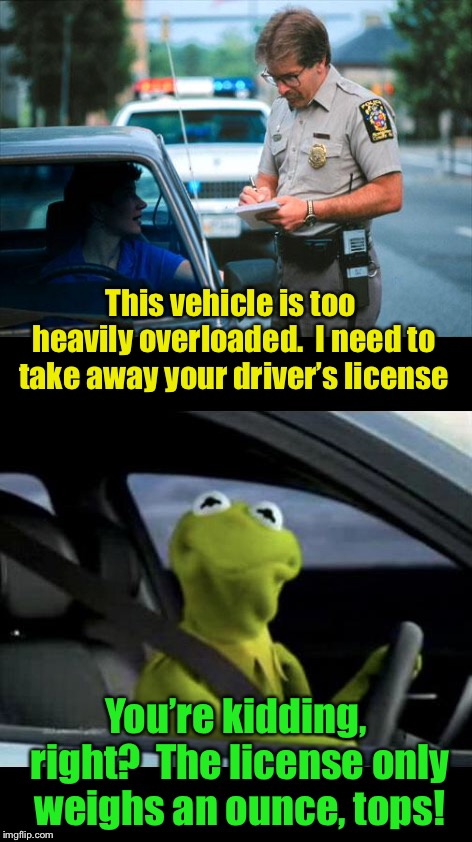 Kermit loses his license | This vehicle is too heavily overloaded.  I need to take away your driver's license You're kidding, right?  The license only weighs an ounce, | image tagged in memes,officer ticket,drivers,license | made w/ Imgflip meme maker