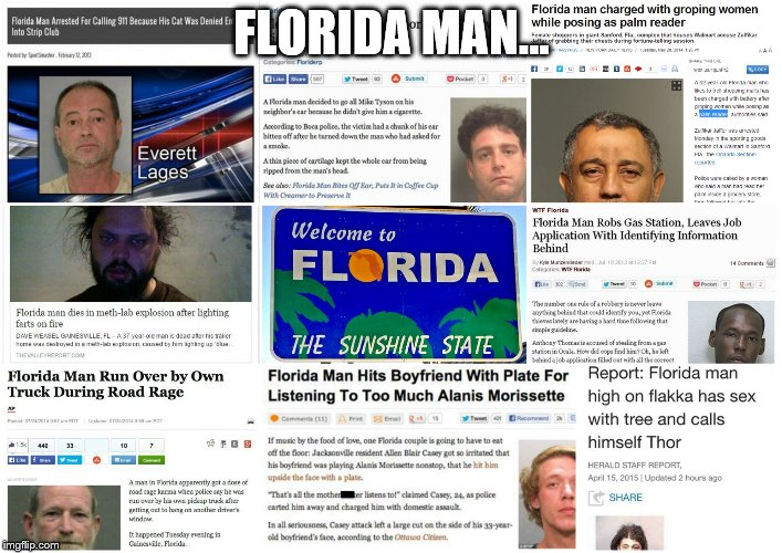 Florida Man | FLORIDA MAN... | image tagged in florida man | made w/ Imgflip meme maker