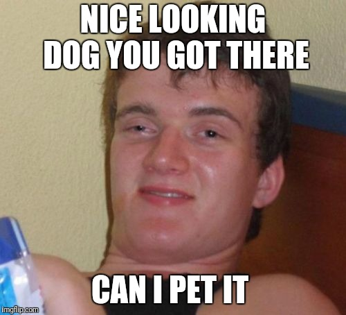10 Guy Meme | NICE LOOKING DOG YOU GOT THERE CAN I PET IT | image tagged in memes,10 guy | made w/ Imgflip meme maker