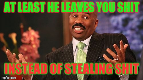 Steve Harvey Meme | AT LEAST HE LEAVES YOU SHIT INSTEAD OF STEALING SHIT | image tagged in memes,steve harvey | made w/ Imgflip meme maker
